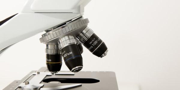 Biokristallisation: möglicherweise eine neue Methode, um homöopathische Hochpotenzen zu erforschen