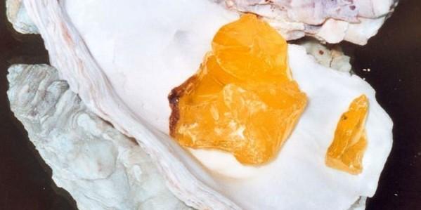 Hepar sulfuris – Kalk-Schwefelleber