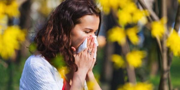 Pollen Homöopathie