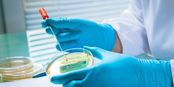 Homöopathie senkt Antibiotika-Verschreibungen und Resistenzen