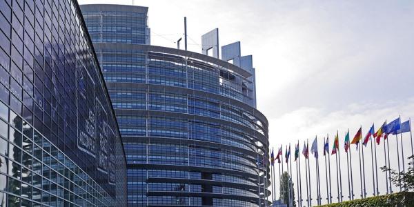 CAM: Konferenz im Europaparlament informiert über den Nutzen der Komplementärmedizin für Europas strapazierte Gesundheitssysteme